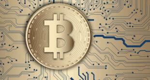 Digitale Geldbörse - das ist die Funktion von Crypto Wallets